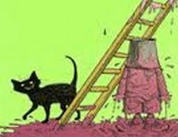 Gato em baixo de escada
